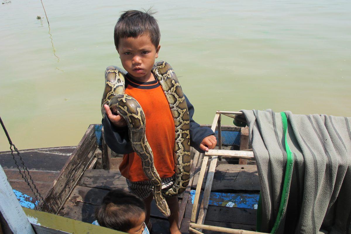 Tonlé Sap, Kambodsja