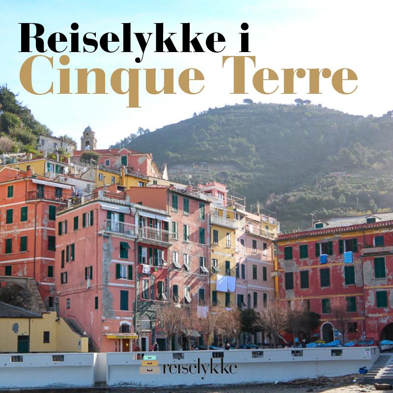 E-bok: Reiselykke i Cinque Terre