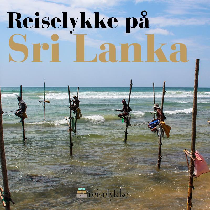 E-bok: Reiselykke på Sri Lanka