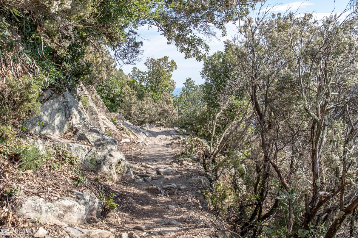 Sti i kupert terreng_Levanto til Monterosso