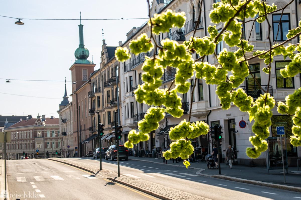 Ullevålsveien i Oslo