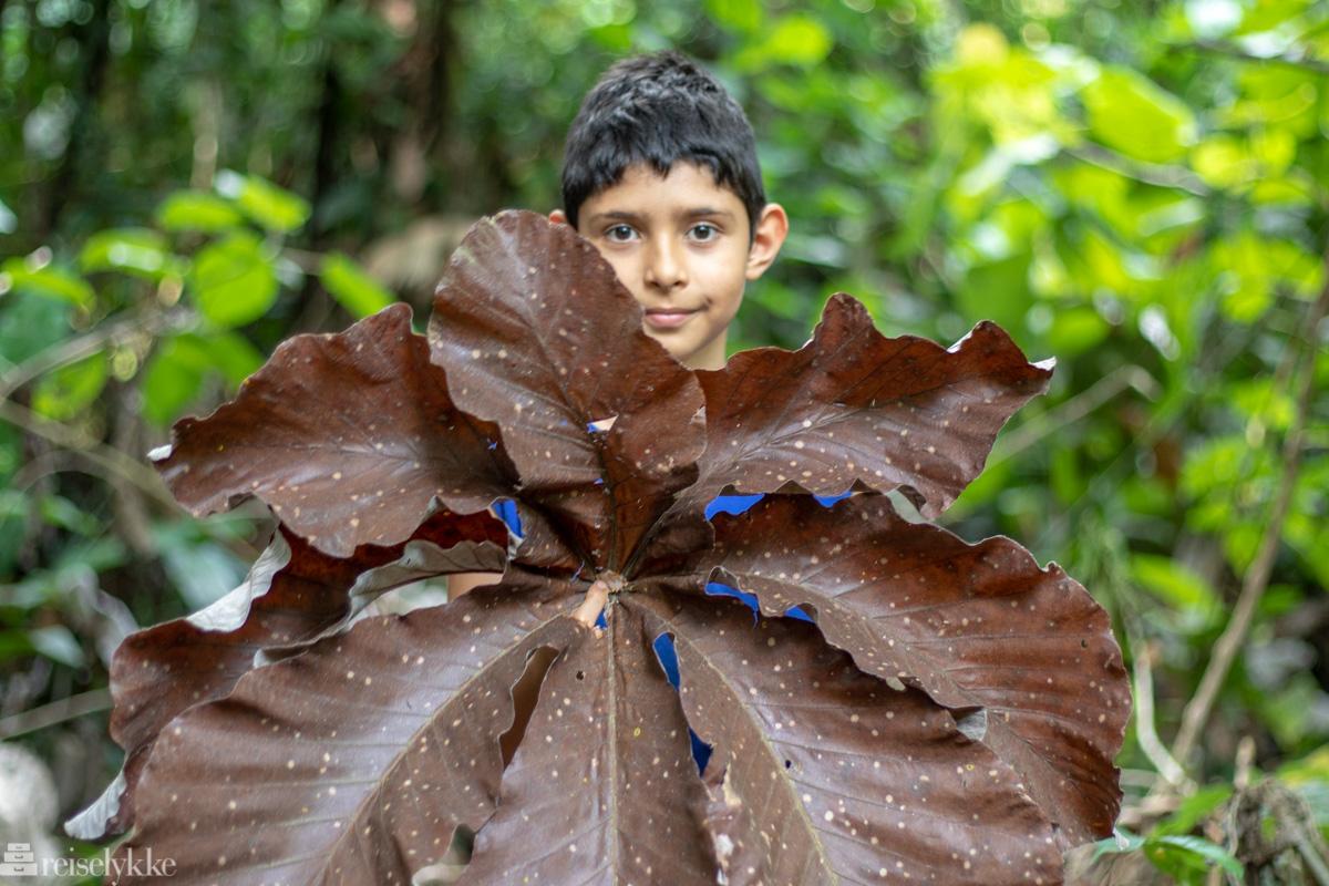 Gutt i Costa Rica