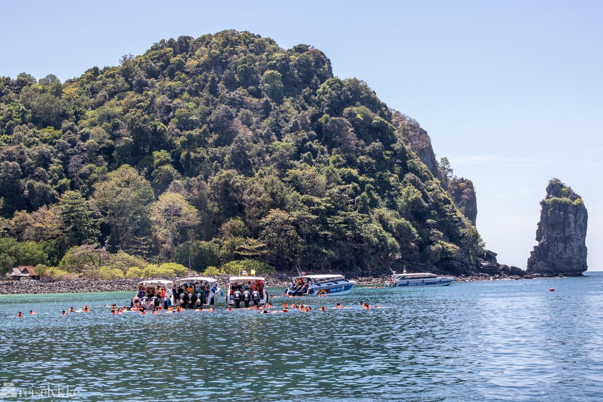 Snorkling fra speedbåt Krabi