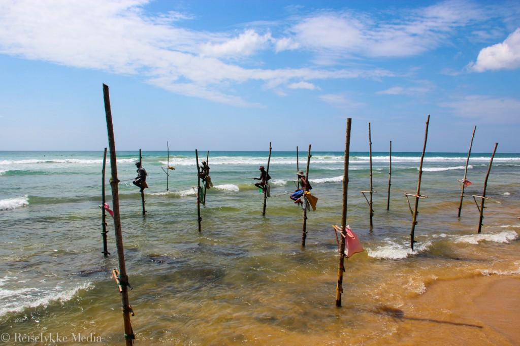 Fabriksnye Sri Lanka - den mangfoldige øya - Reiselykke KZ-17