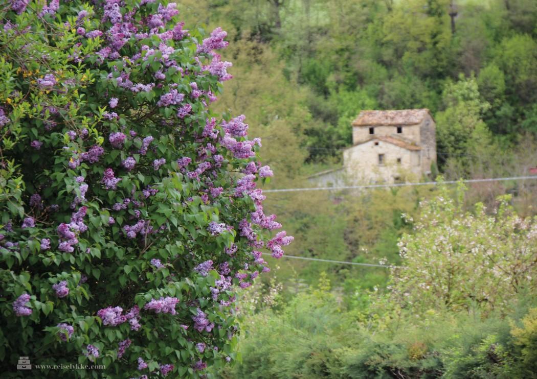 Montefeltro i Marche