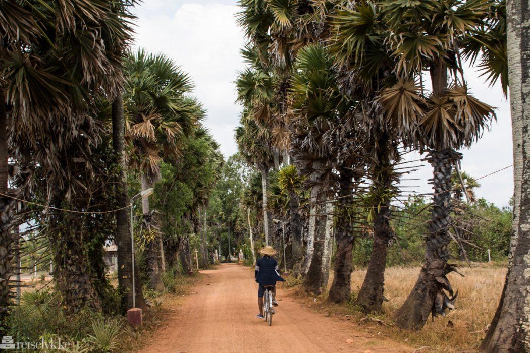 Sykkeltur i Kampot
