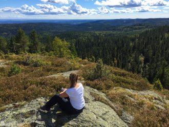 Vestfolds høyeste fjell - Skibergfjell