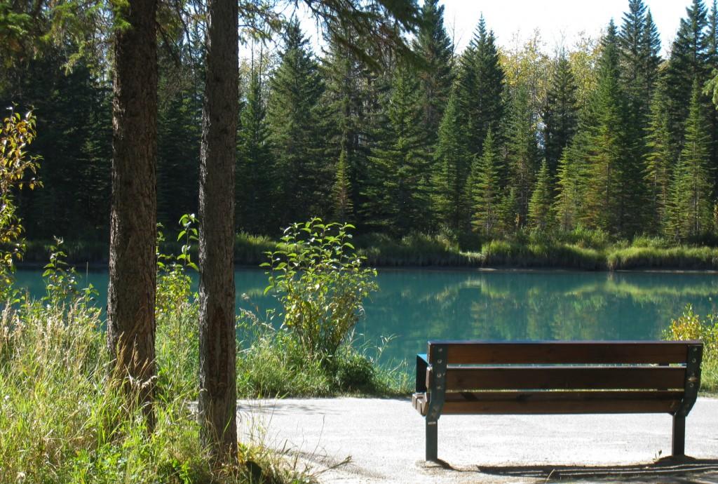 Bow River flyter forbi i Banff Foto: privat