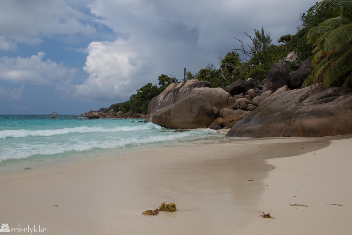 Anse Lazio Seychellene
