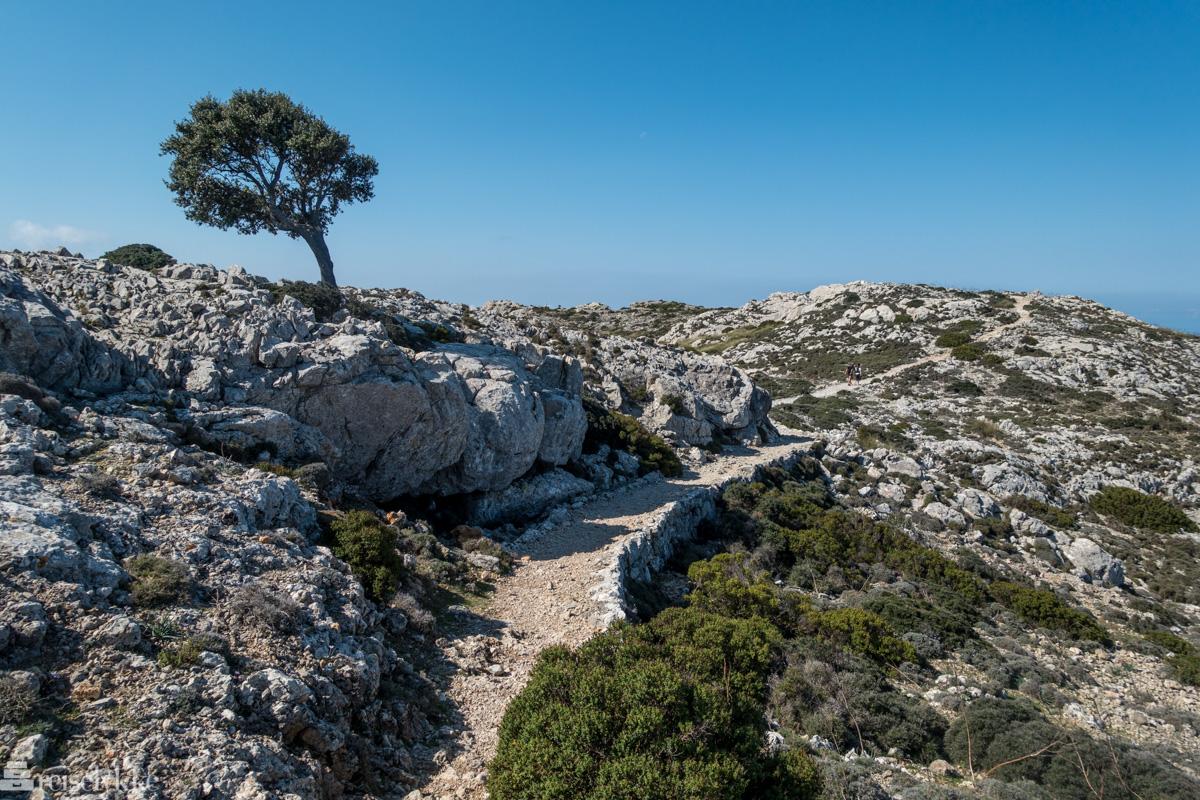 Camí de S'Arxiduc, Terra de Tramuntana, Mallorca