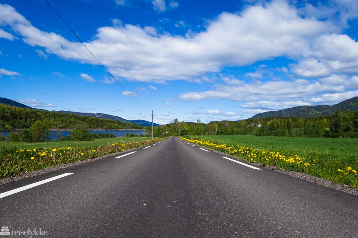 Å reise alene: veistrekning - illustrasjonsbilde