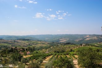En reise i italiensk kokekunst. Illustrasjons bilde fra Toscana, med vinmarker og landskap