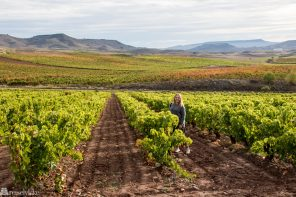 En reise i vin i La Rioja
