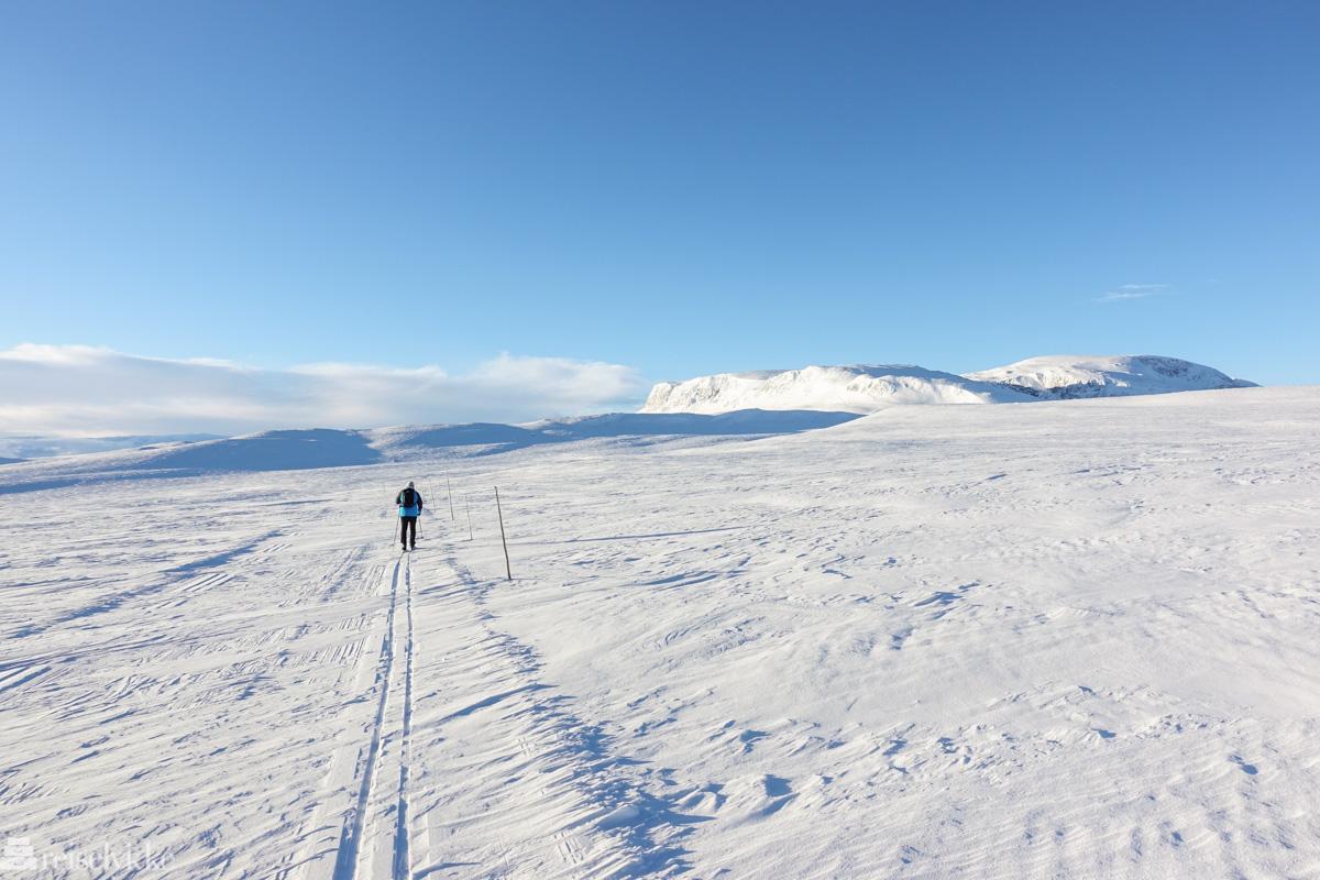 Geilo: Ensom skigåer over vidda
