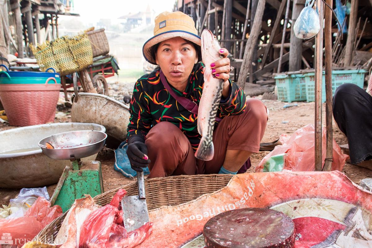 lokalt fiskemarked Tonlé Sap