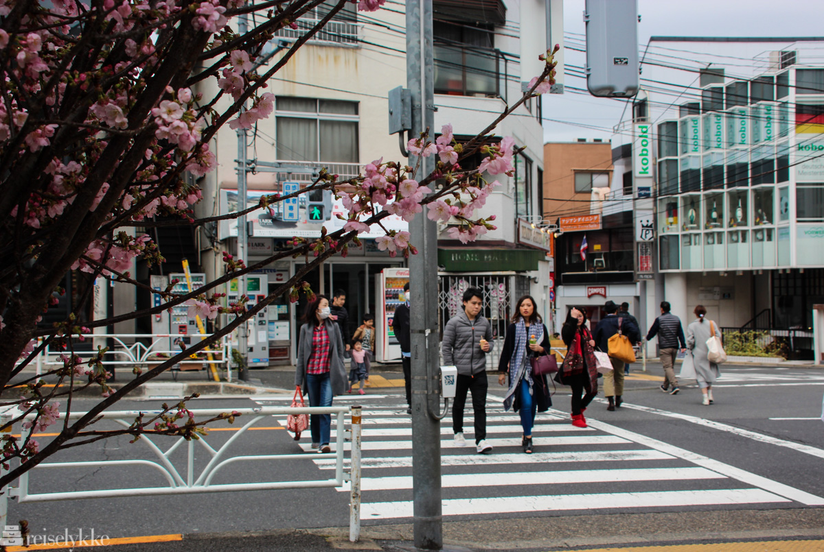 Gatekryss i Daikanyamatsu, Tokyo