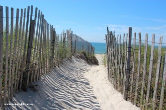 Reiselykke i Hamptons