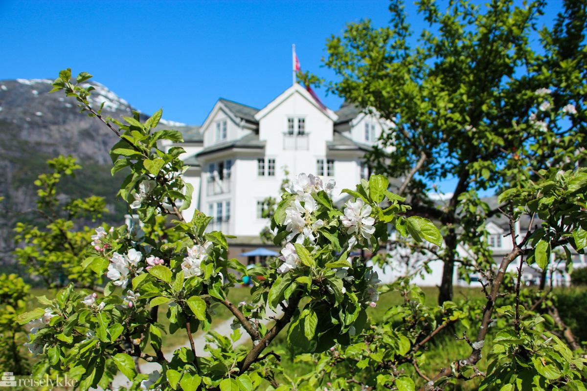 Vøringsfossen Hotel i Eidsfjord