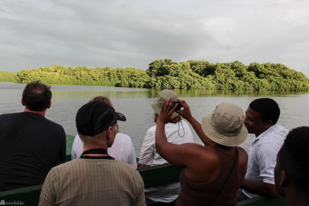 fuglejakt på Trinidad, Caroni Swamp National Park