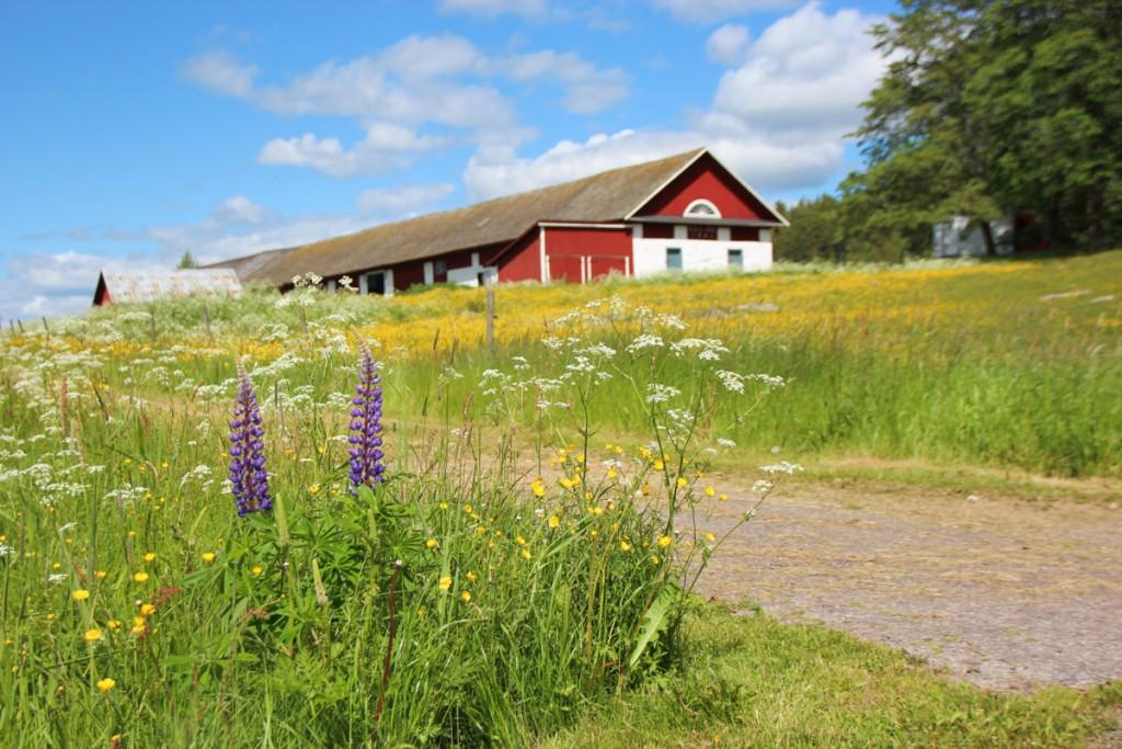 Biltur i Värmland
