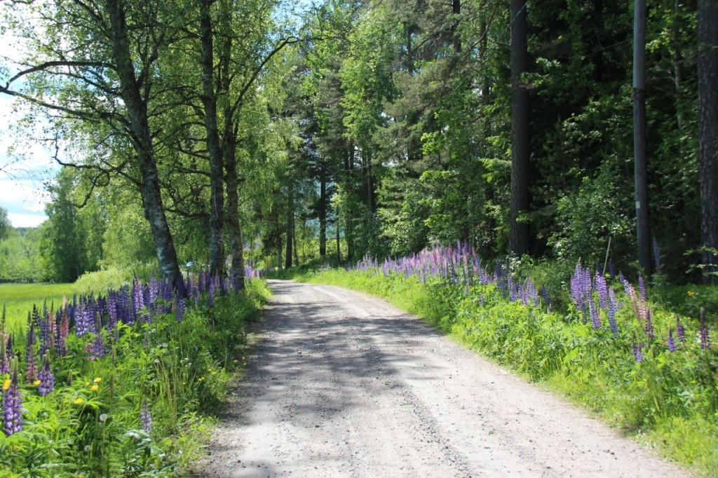 Roadtrip i Värmland