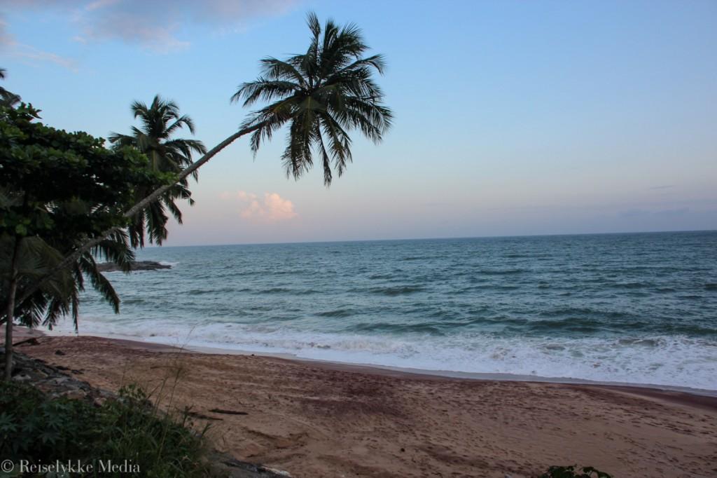 reise i Sri Lanka