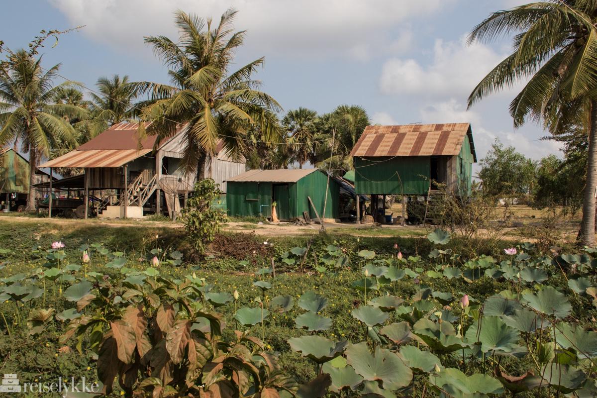 Kampot landsbyliv