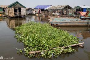 På besøk i en flytende landsby på Tonlé Sap