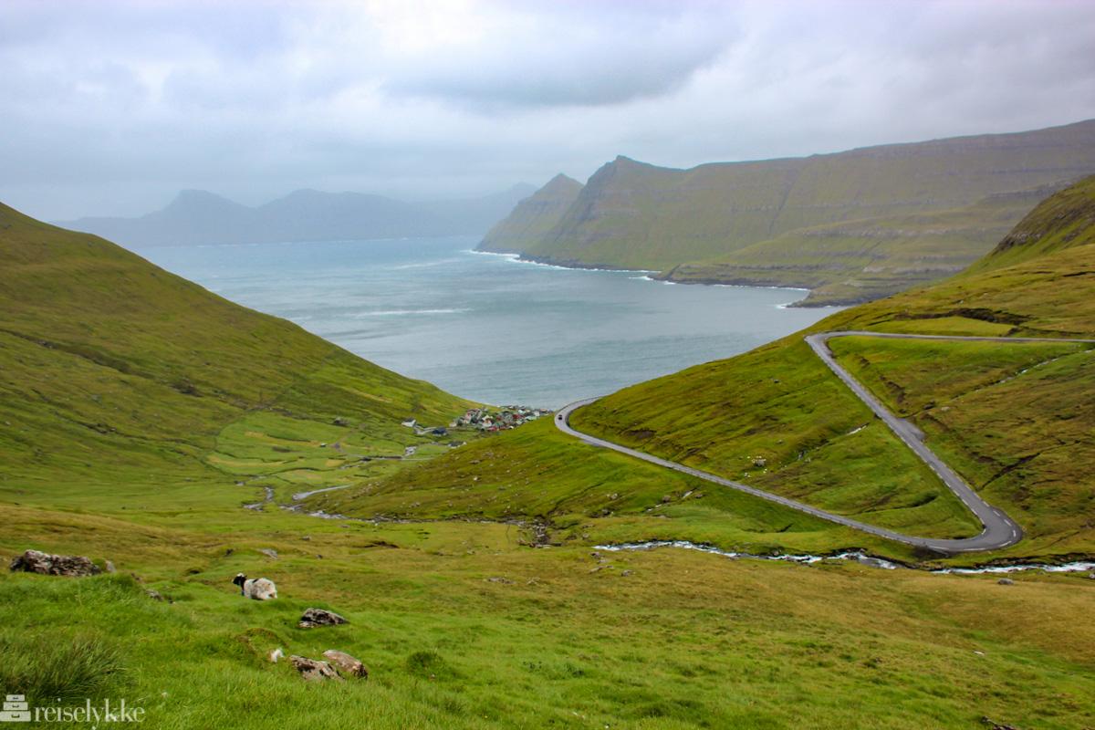 """Kjøretur langs """"buttercup routes"""" på Færøyene"""