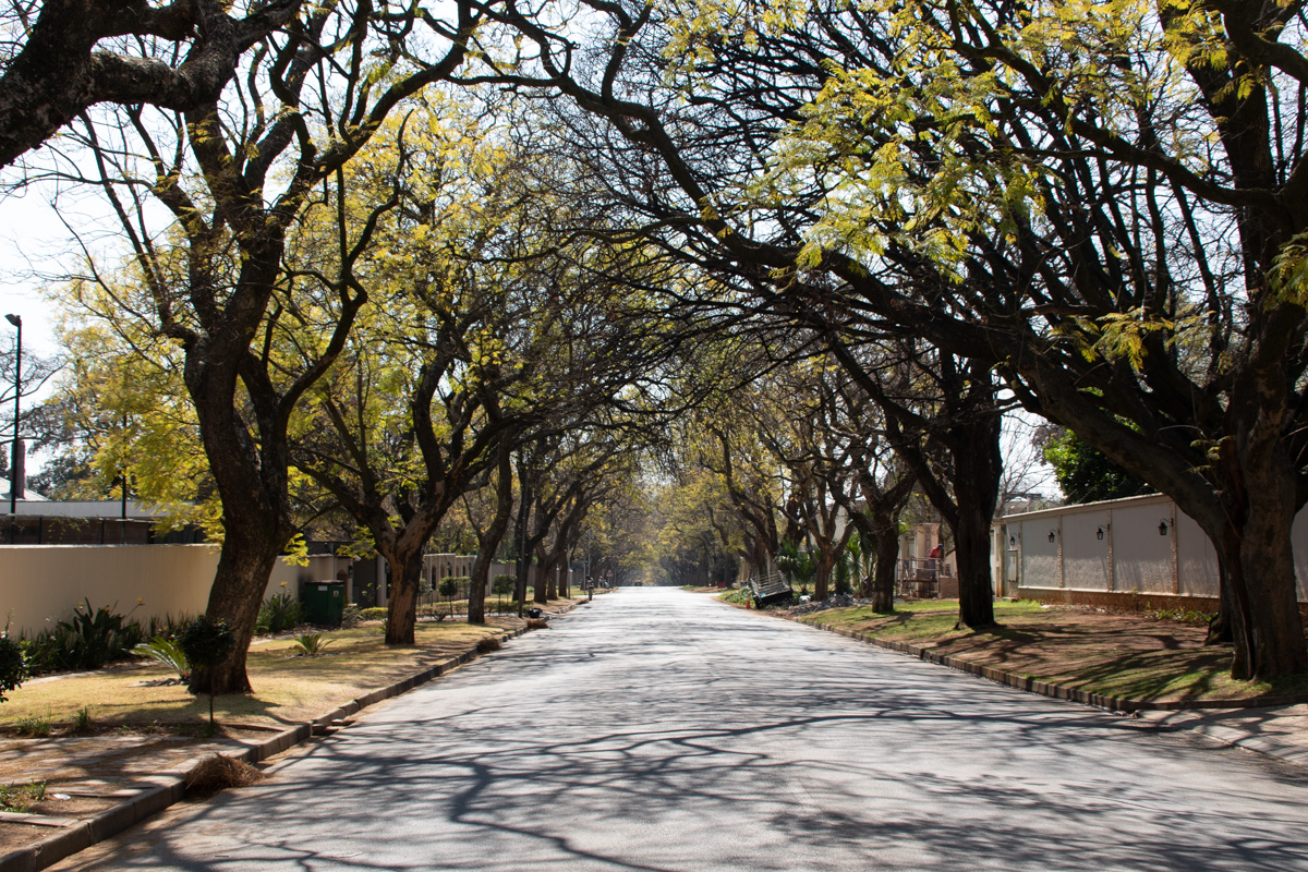 Mandelas gate i Houghton
