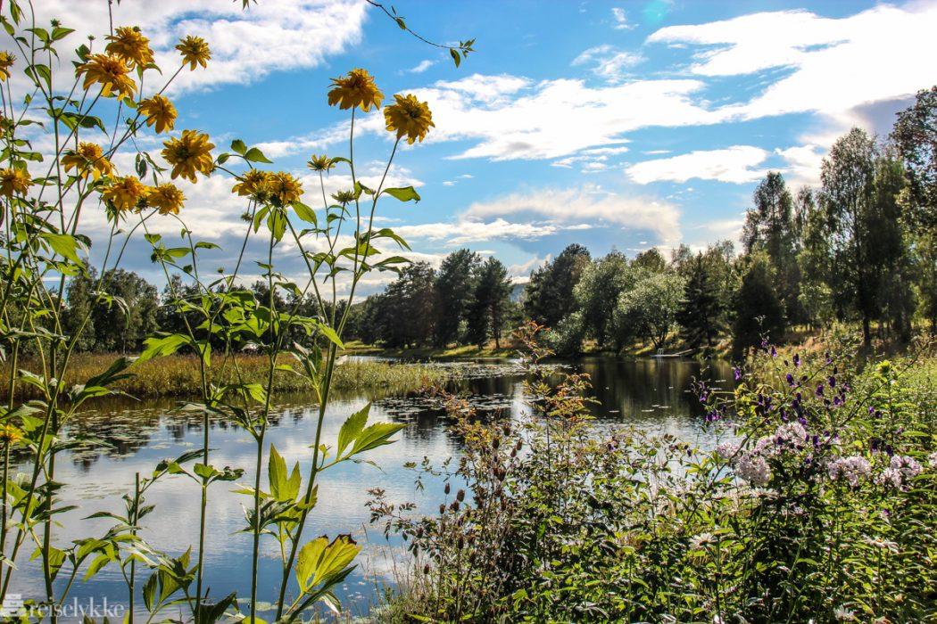 Midtsommerfeiring i Sverige