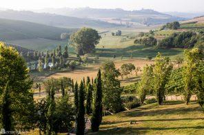 Vinopplevelser i Monferrato, Piemonte