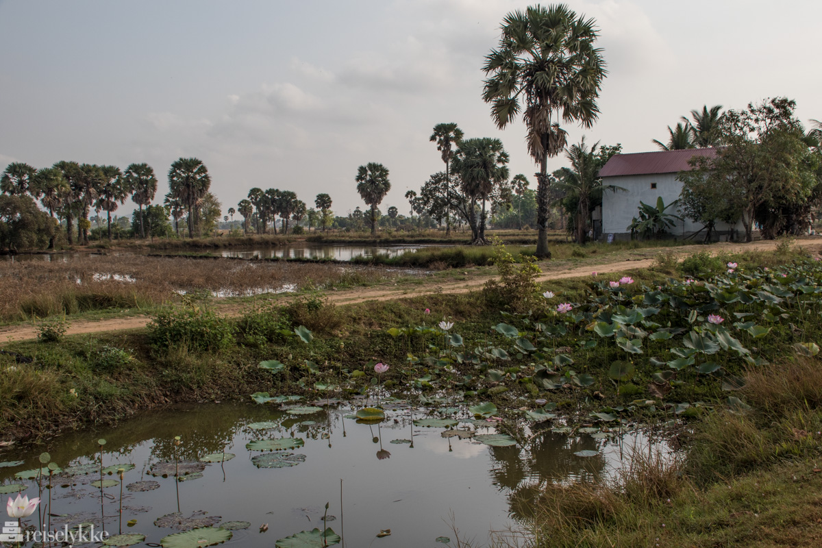 På landsbygda ved Kampot2