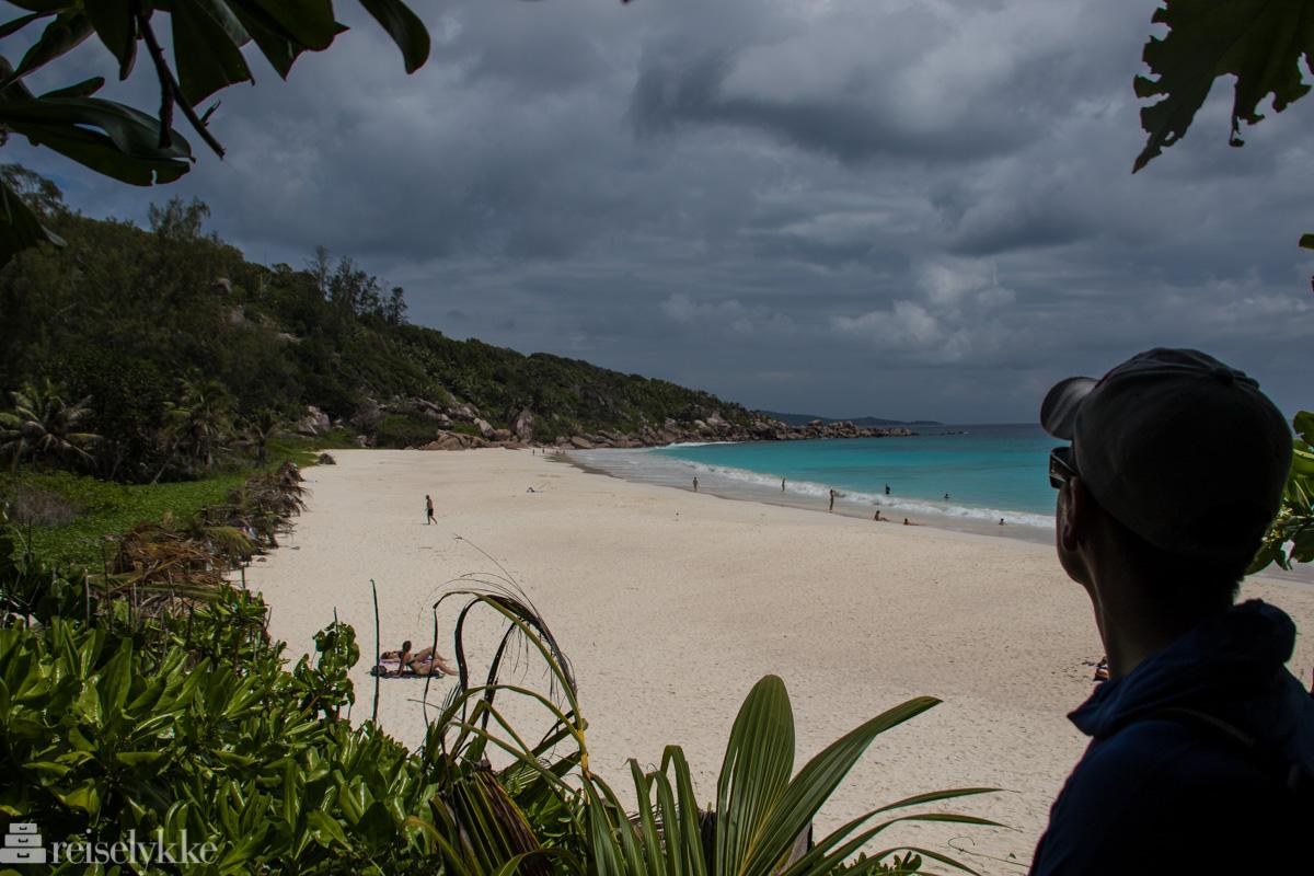 Petit Anse La Digue Seychellene