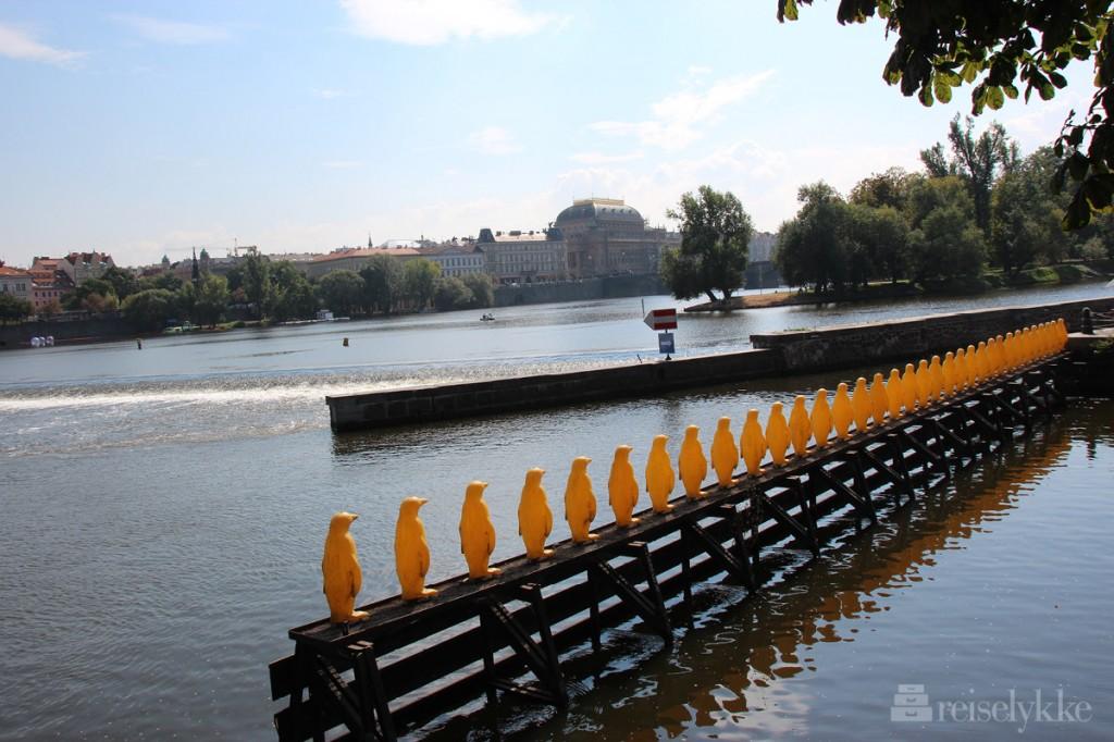 Praha, kampa museum