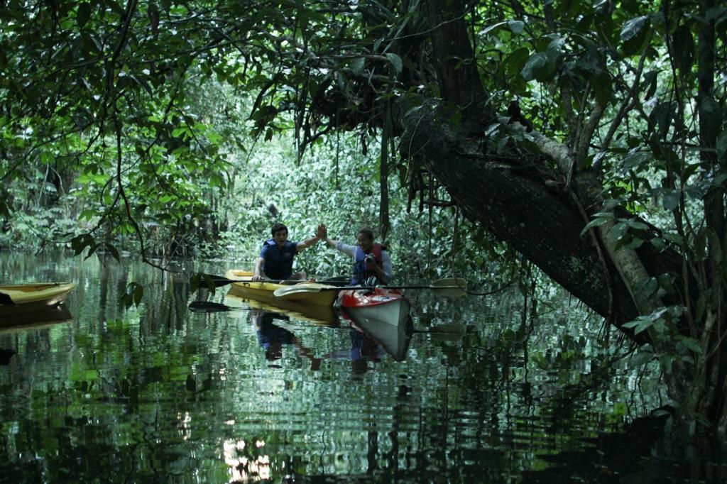 padletur i mangrovene, guatemala