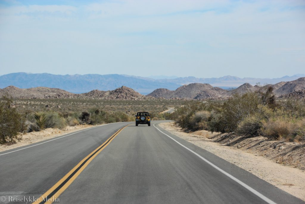 Roadtripping Joshua Tree National Park