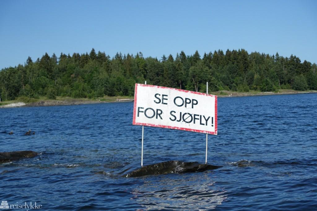 Skilt i Oslofjorden: Se opp for sjøfly