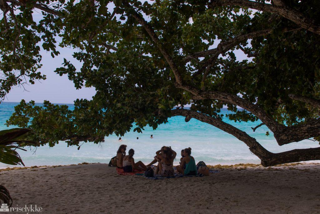 Strandliv på Anse Lazio Praslin Seychellene