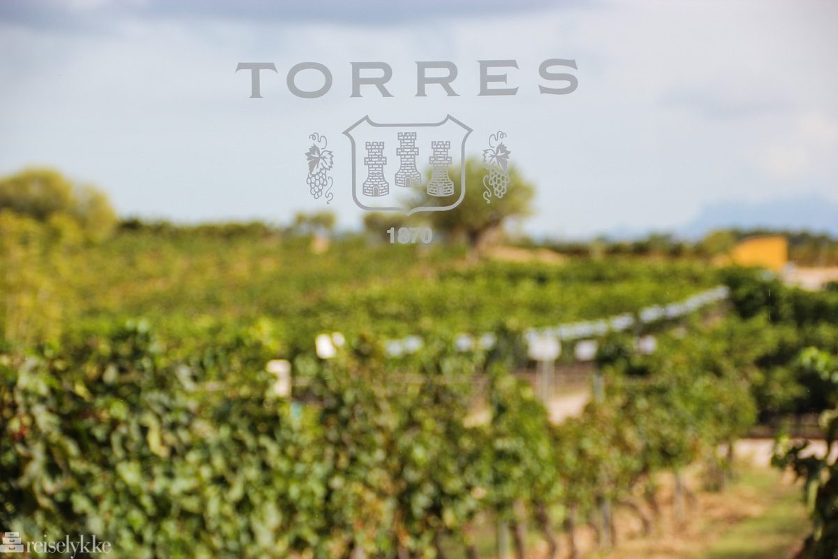 Torres Service Center