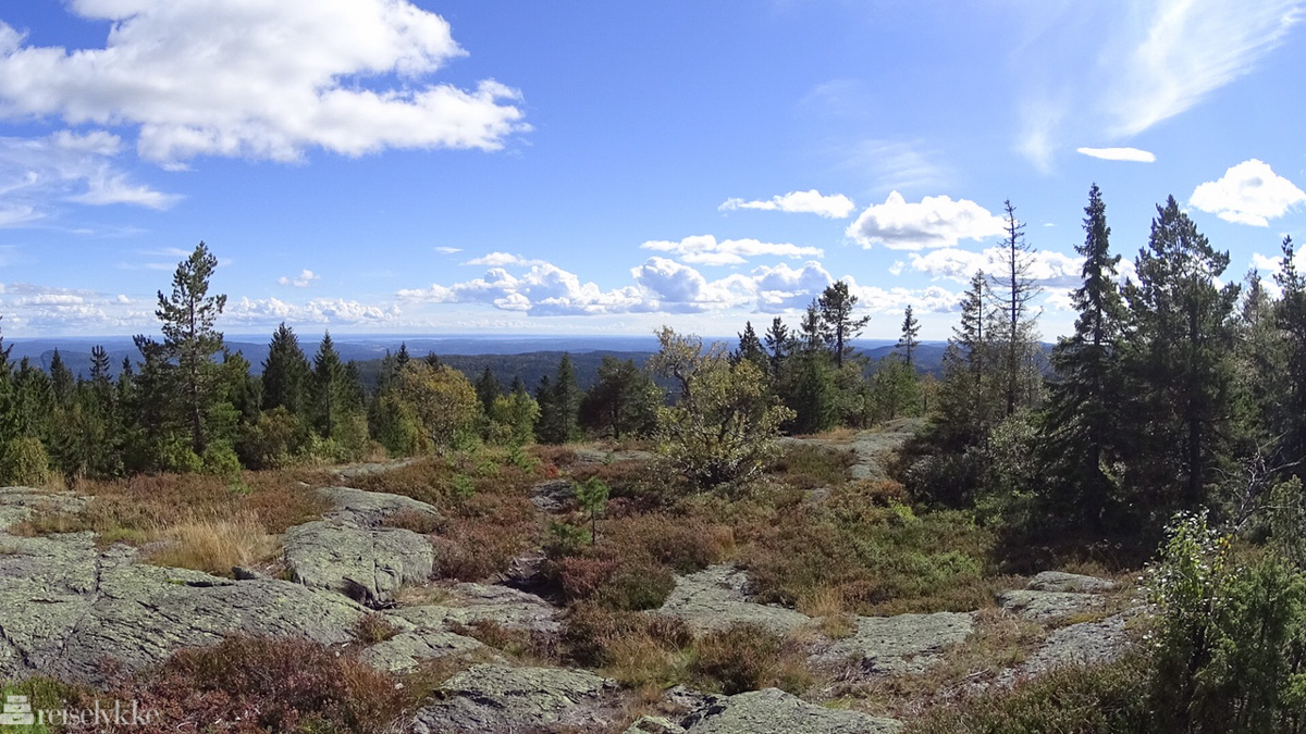 Vestfolds høyeste fjell er Skibergfjell